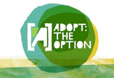AdoptTheOption