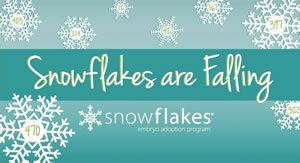 snowflakes-falling